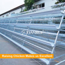 Tianrui H Type Automatic Broiler Poultry Farm Cage Design