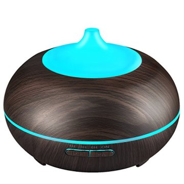 Mini Rechargeable Spa Aromatherapy Humidifier