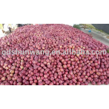 top class fresh red hua niu apple