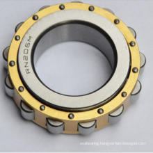 Rn206 Cylindrical Roller Bearing