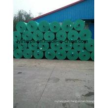 Green PE Tarpaulin Roll, Finished Tarpaulin Sheet with Grommets
