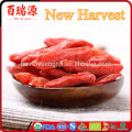 Les baies séchées de fruit de Goji importent de la Chine au vrac de pakistan vendent le goji
