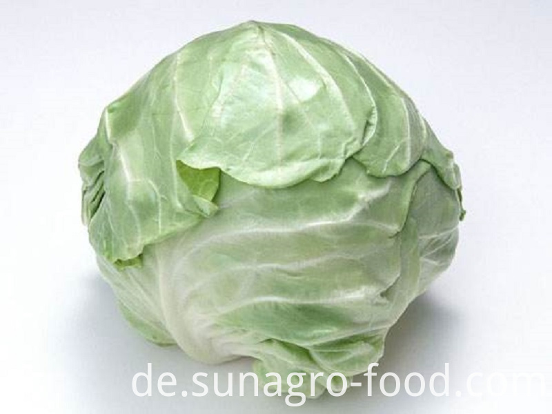 Quality Cabbage With Different Weights