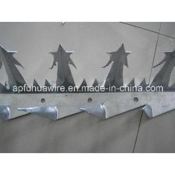 Anti-Climb Wall Spike Sicherheit und schön