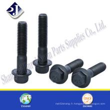 Ts16949 Certificate Product Hex Flange Bolt avec noir