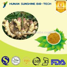 Sunshine chinesische Medizin Ingwer Pulver & Gingerols für warme Innards