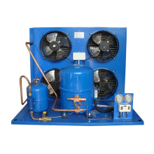 Unidade de condensação da sala fria do tipo de Copeland para o armazenamento frio