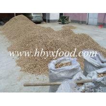 Seco Shiitake Mushroom Leg De Hubei
