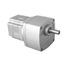 Dc Brushless Permanent Magnet Motor