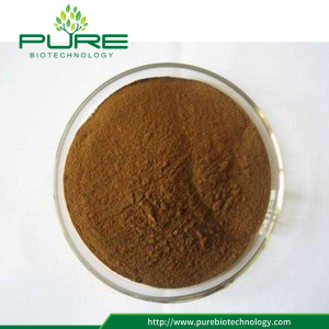 Best Quality Tribulus Terrestris Extract Powder / capsules
