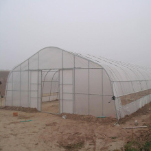 Top for Greenhouse Film Buy Tunnel Greenhouse,Hoop Greenhouse For Vegetable export to Tajikistan Exporter