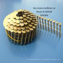 "1-1 / 4 ""X. 120 EG Roofing Coil Nail 7200PCS / CTN Factory en China"