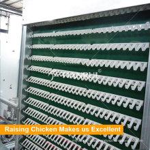 Sistema de recolección de huevos automático completo avanzado del puerto agrícola