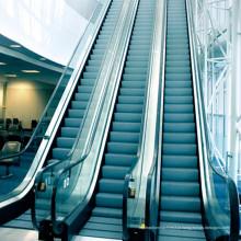 Escada rolante comercial do passageiro do começo do automóvel de 600mm 800mm 1000mm auto
