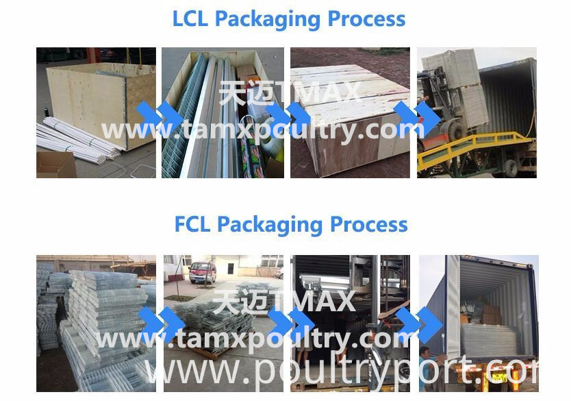 LCL and FCL packing