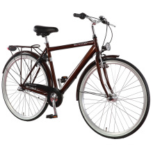 Popular Nexus 3 Speed ​​EU Man City Bike (FP-CB-S01)