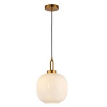 Decorative  Indoor Pendant Lamp