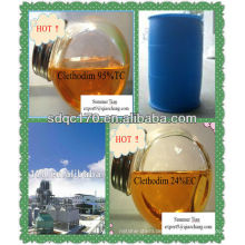 Herbizid clethodim 95% TC 24% EG 12% EG