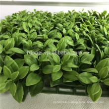 PE зеленый искусственная загородка изгороди для дома и сада озеленение
