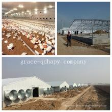 Casa prefabricada de aves de corral con todo el equipo avícola