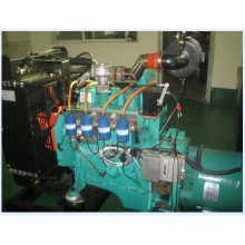 20kVA-2000kVA Natural Gas Generating Engine Generator Set
