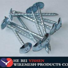 Q195 umbrella head twist shank roofing nails
