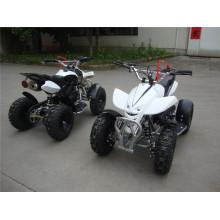 49cc Mini ATV für Kinder