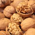 Cheap price good quality walnuts inshell