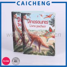 Kundengebundenes englisches Bildkindergeschichtebuch