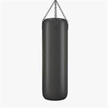 Ganas Professional Personal Training Hanging Boxing Bag