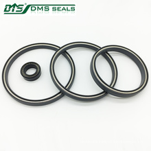 carbon/bronze/glass filled ptfe/teflon spring energized ptfe seal