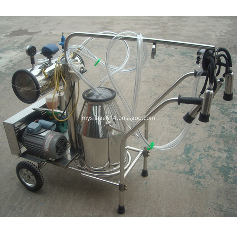 Milking Machine with One Bucket for cows