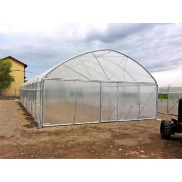 Cheap Single Greenhouse for Medical Planting