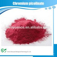 Best manufacturer Top sale chromium picolinate powder