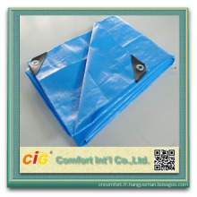 Hot Sale PVC Tarpaulin Transparent Thick