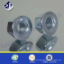 Hex Flange Nut with Blue Zinc