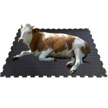 Hot Sale Dairy Cow Bed Equine Horse Stable Stall Barn Flooring Rubber Mat
