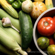 Légumes surgelés