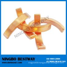Professional Segment and Arc Neodymium Magnet