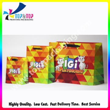 Ribbon Handle Full Color Printing Gloss Paper Bag
