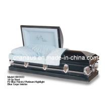 Cercueil de rentrer à la maison (ANA)