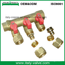 OEM&ODM Quality Brass Forged 3-Way Manifold (AV9069)