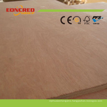 Promotional Price Nice Design of Veneer Plywood Door