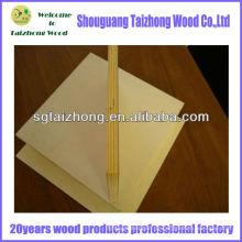 Hochwertiges Brandschutz HPL Laminiertes Sperrholz