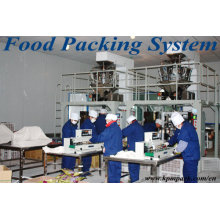 Automatic Plastic Toys Packaging Machine