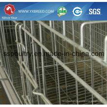 H Frame Layer Bateria Equipamento Cage for Chicken Birds Farm