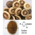Extrato de Aurantium de Citrus Perder Peso