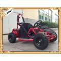 1000 W mini electric dune buggy