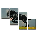 New Design with Frames Stretched Canvas Print