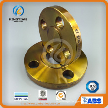 Coated A105 Carbon Steel Slip-on Flange Forged Flange with TUV (KT0284)
